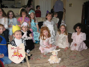 Hans Christian Anderson fairy tale party