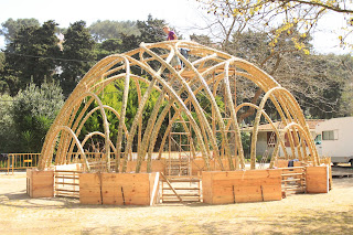Casas ecológicas com cana IMG_8701