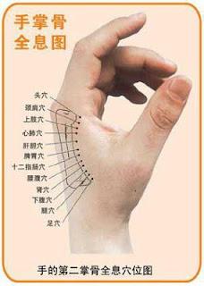 Titik Akupuntur Tangan Daerah Pijat Refleksi Tangan