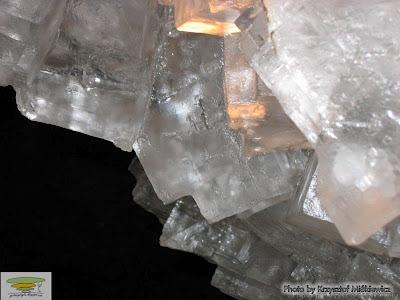 zdjęcie podświetlonych kryształów halitu w grocie kryształowej w Wieliczce