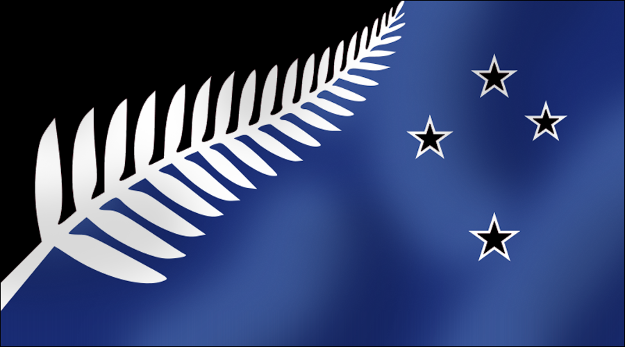 NZ fern flag black blue and white D17