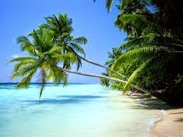 Laut dan Pantai