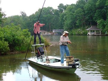 Fly carpin carp fly fishing guides north carolina for Fly fishing guides north carolina