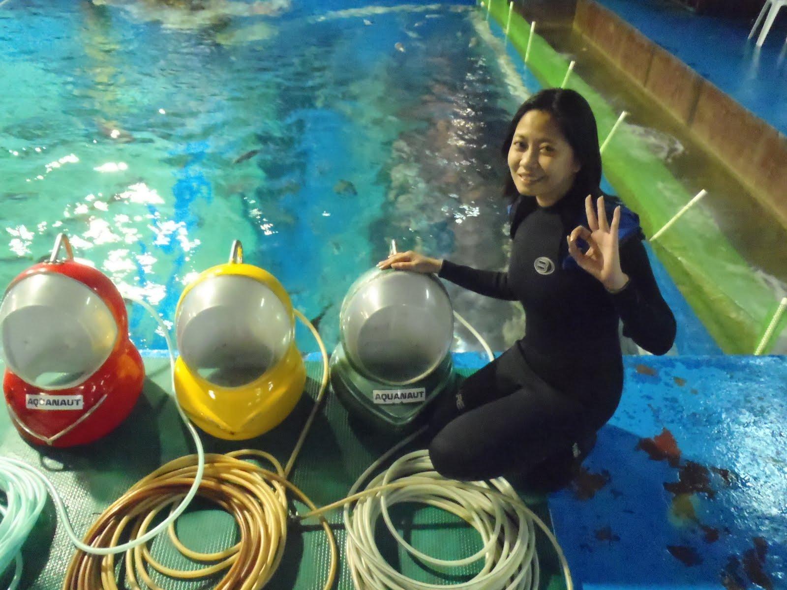 Iaadamlim Diving At Manila Ocean Park Via Aquanaut Voyage A Review