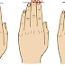 See How Your Fingers Length Reveals Your Personality