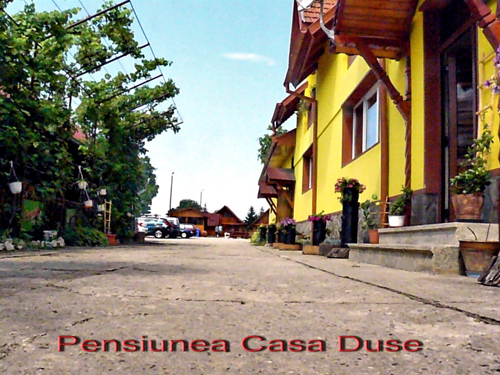 Casa Duse 04