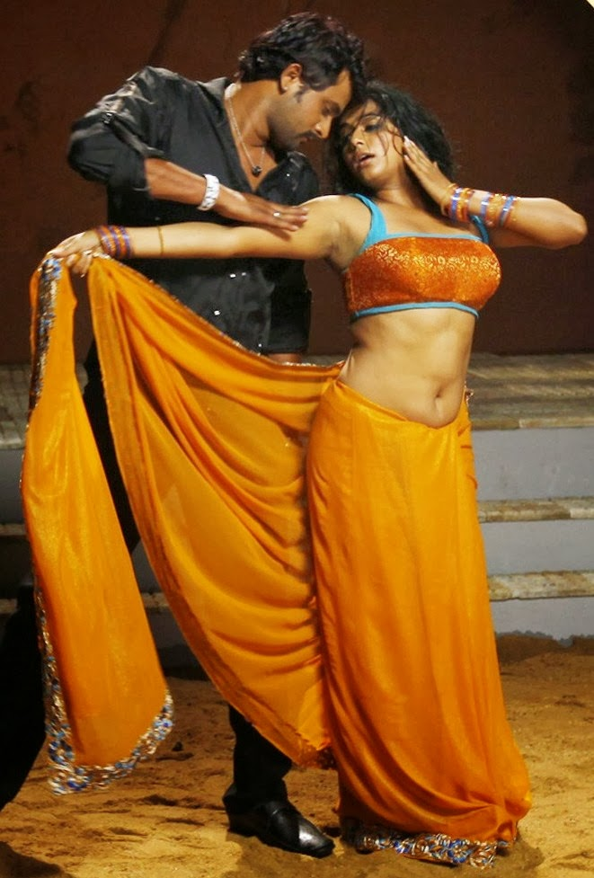 Priyamani Hot Navel S In Saree From Tikka Movie