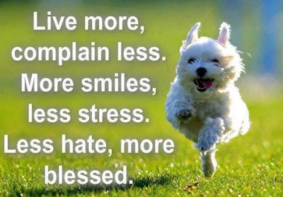 Live more, Complain less, More smiles, Less stress, Less hate, more blessed.