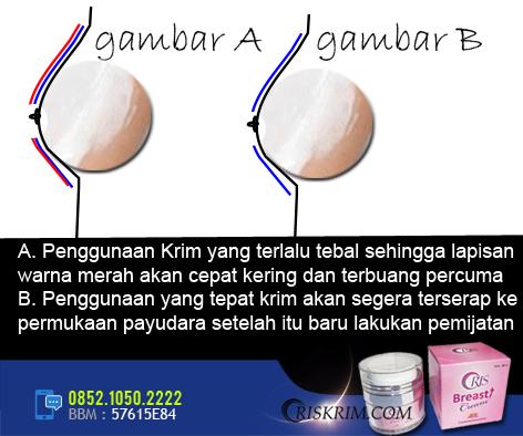 penggunaan-oris-breast-cream