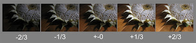 photo bracketing example, thirds, exposure