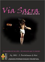 DVD VIA SACRA