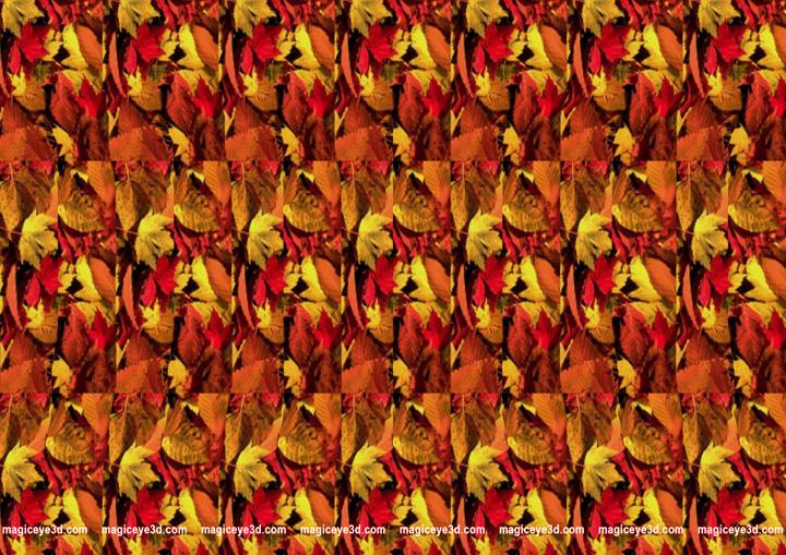 Kirimkan Ini lewat Email BlogThis! Berbagi ke Twitter Berbagi ke ...: blogsoftgratis.blogspot.com/2012/02/gambar-3d-magic-eye.html