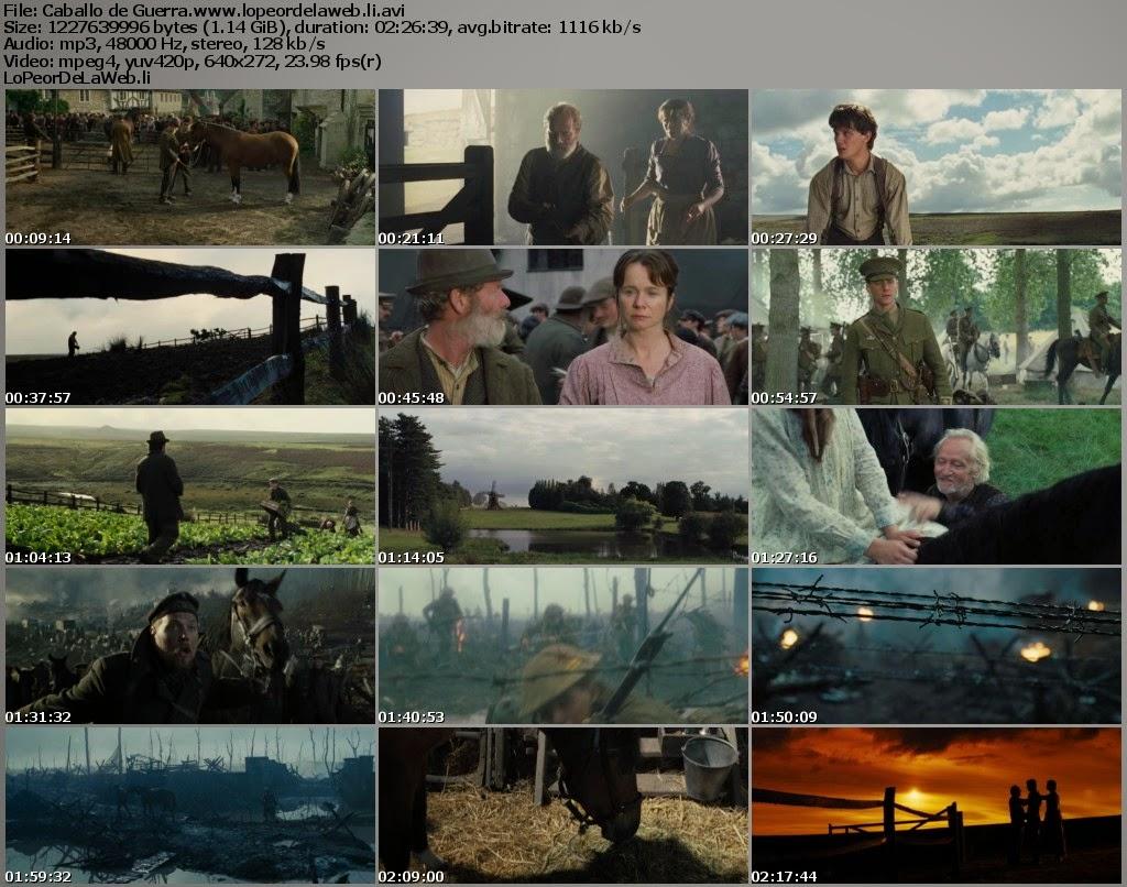 Caballo de Guerra (2011) DVDRip Latino