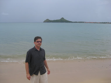 margetts in st. lucia 2010
