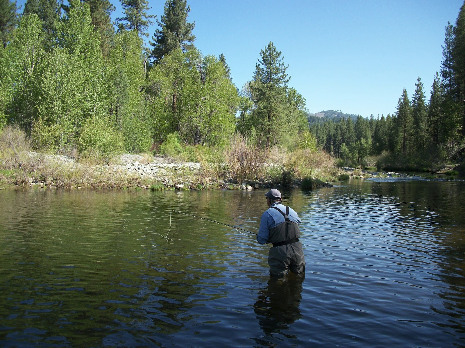 Jon Baiocchi Fly Fishing News Lake Davis Middle Fork