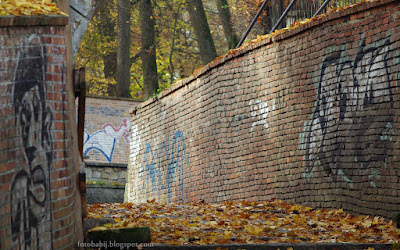 http://fotobabij.blogspot.com/2015/11/wszedzie-graffiti.html