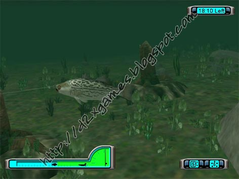 Pro bass fishing 2003 free download games for Pro fishing games