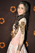 Kanika Kapoor glamorous photos-thumbnail-17