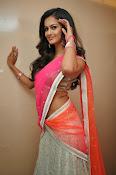 Shubra Aiyappa glamorous in half saree-thumbnail-5