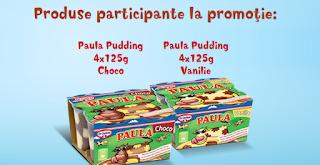 www.paulapudding.ro (campanie promotionala Paula Pudding)