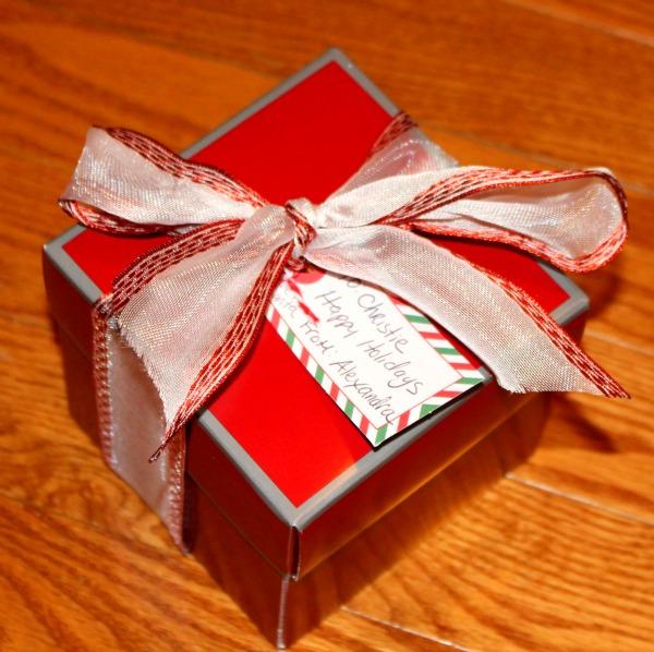 blogger-secret-santa, secret-santa, secret-santa-gift-ideas, secret-santa-gift-ideas-for-women, secret-santa-gift-ideas-for-teens, selfie-compact-mirror