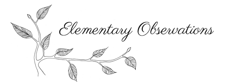 Elementary Observations