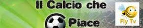 Il Calcio che Ci Piace - Tv