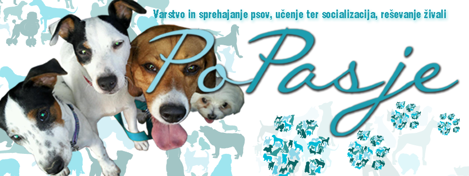 PoPasje