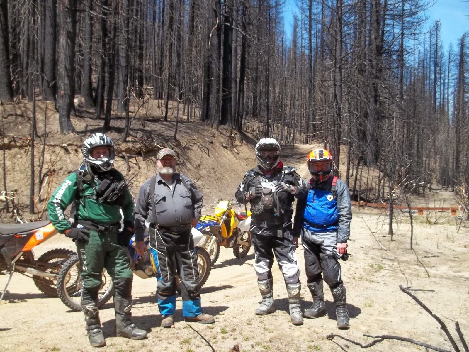Stakeholder Groups Support Post Rim Fire Salvage Timber Program