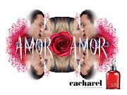 Amor Amor este un elixir al dragostei, este parfumul care îmbină perfect . (cacharel amor amor )