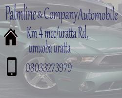 PALMLINE & COMPANY AUTOMOBILE