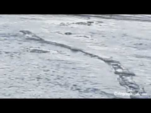 "Iceland Loch Ness Monster ""Original Video"""