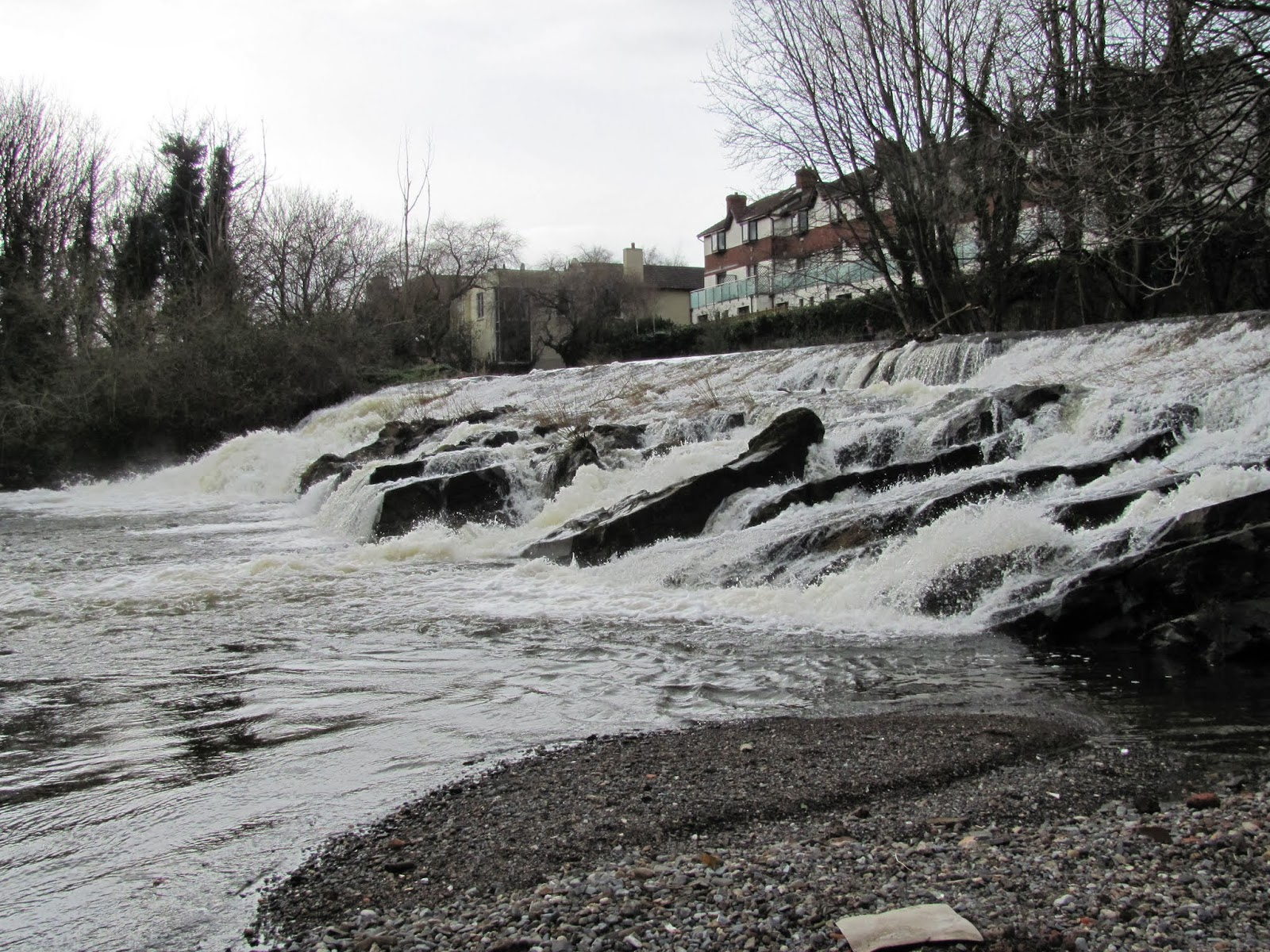River Dodder is a Little High in Dublin