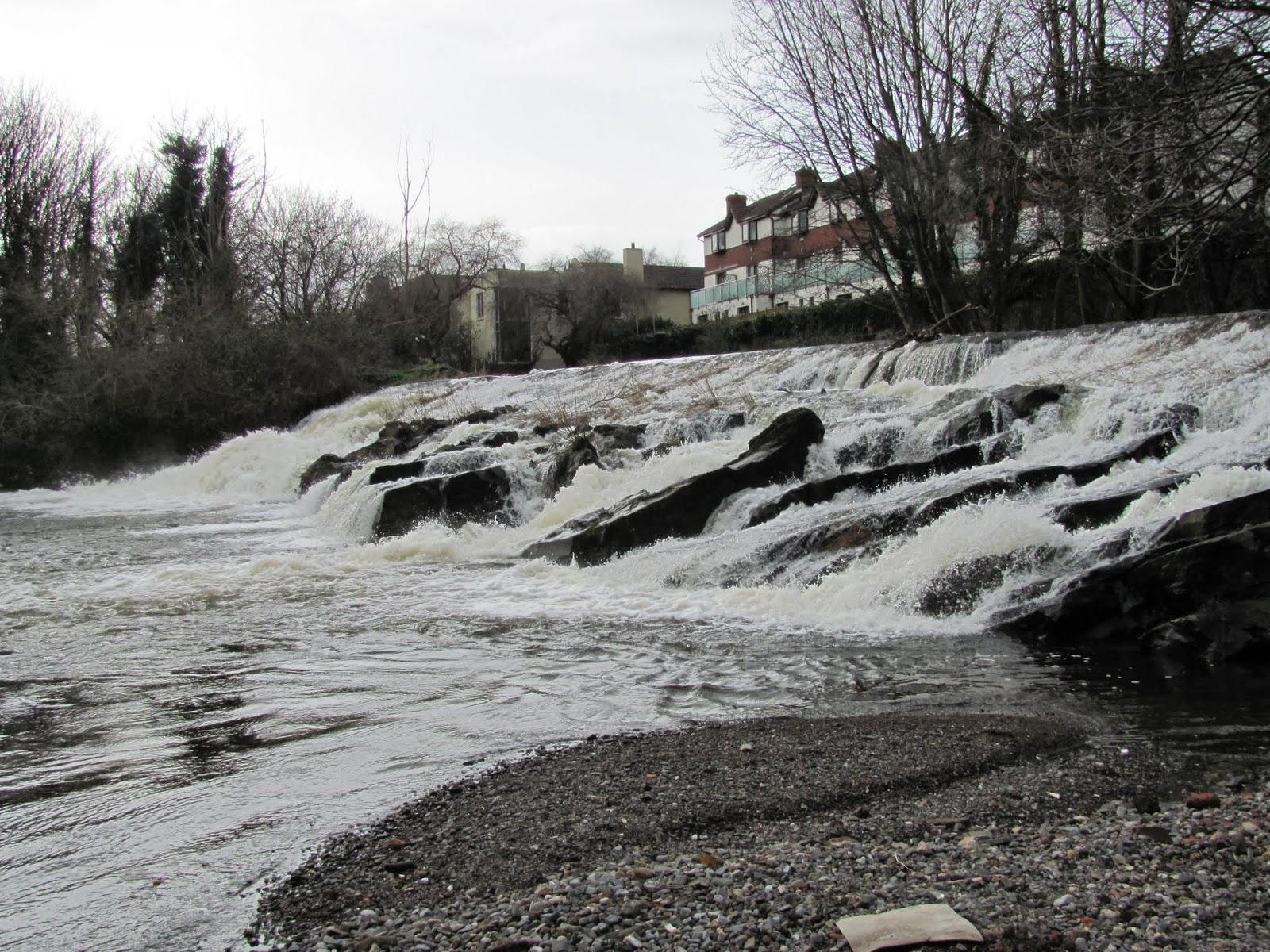 River Dodder is a Little High in Dublin