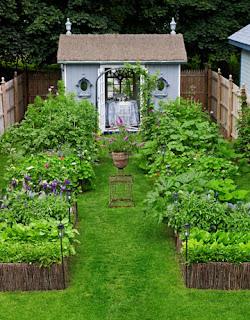 Perfect Small Home Vegetable Garden Design