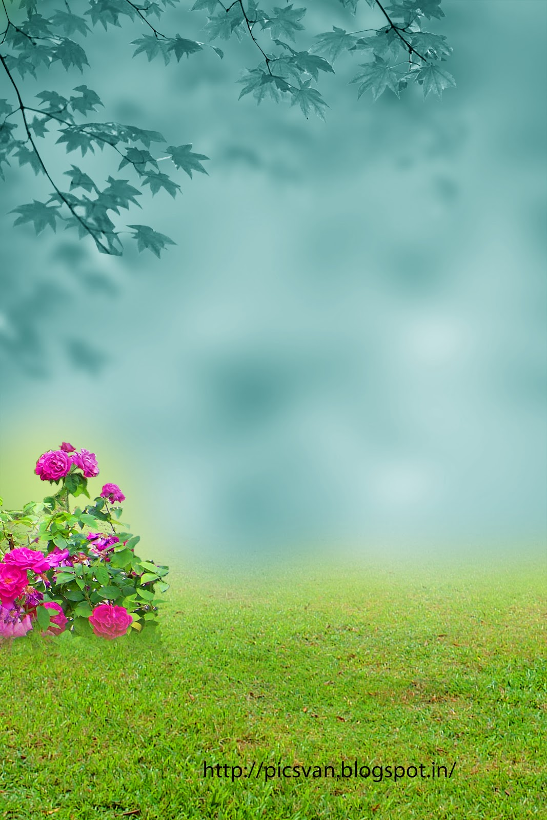 Nature Background For Photoshop Editing Services