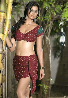 actress navel is HOT Pics %281%29.jpg