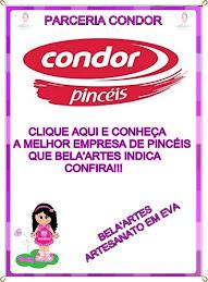 PARCERIA CONDOR