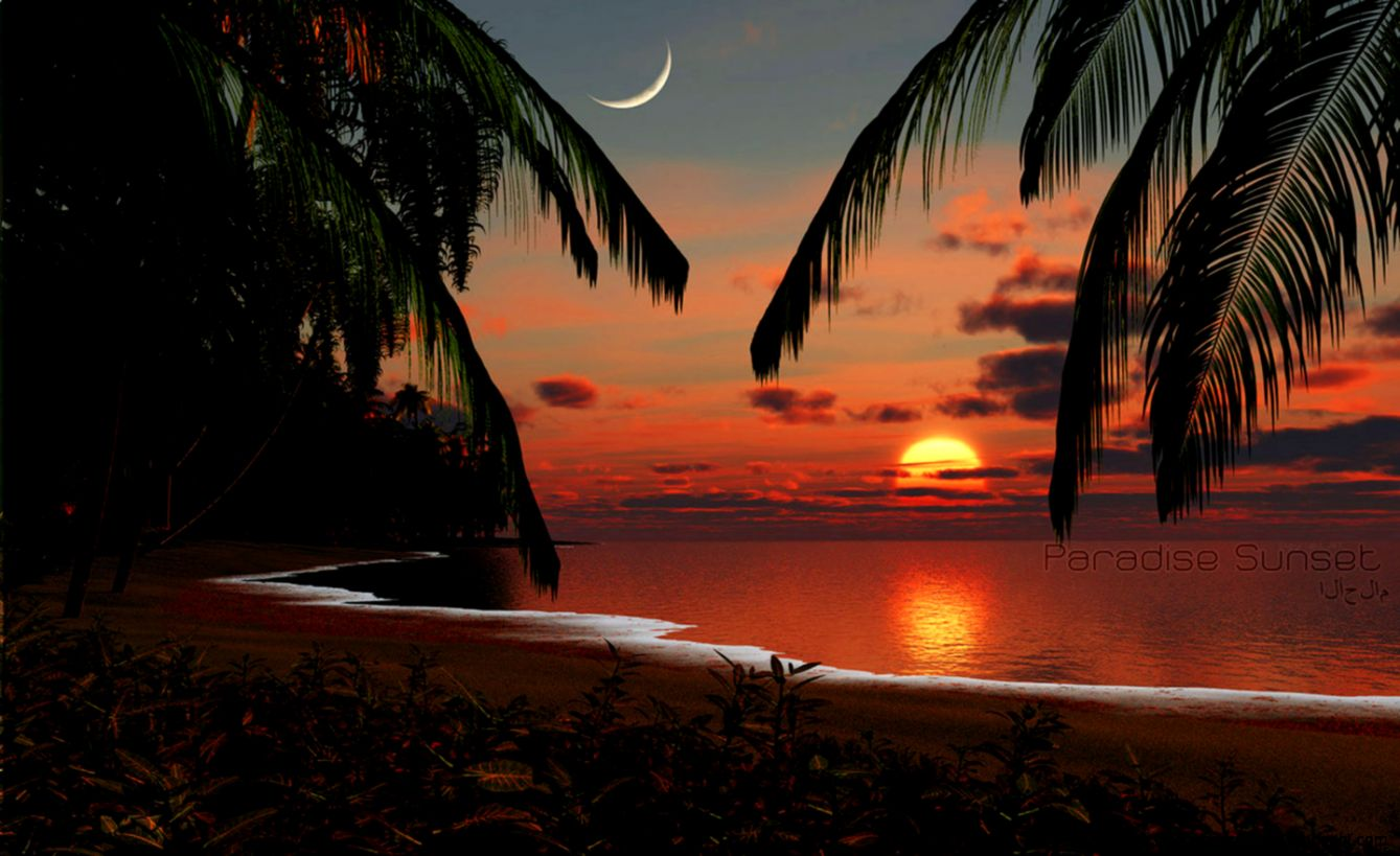 Tropical Island Paradise Sunset   wallpaper