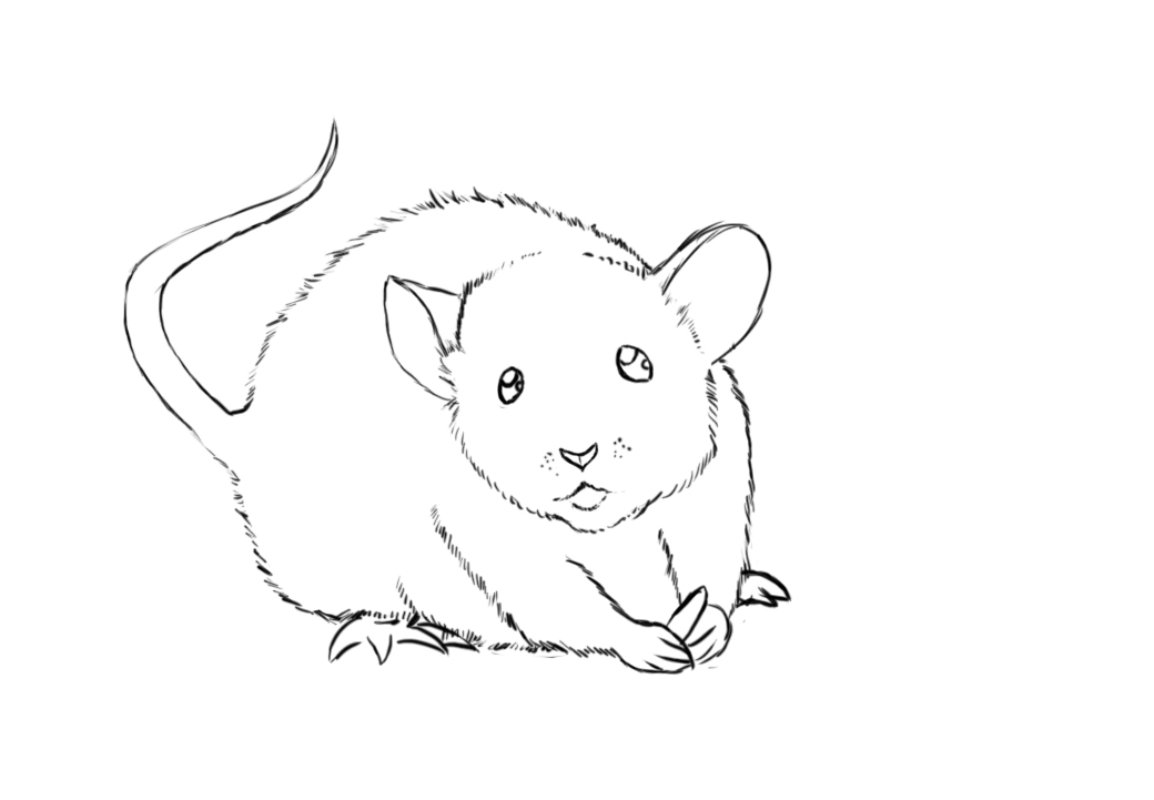 Line Drawing Mouse : Line drawing of a computer mouse pictures to pin on