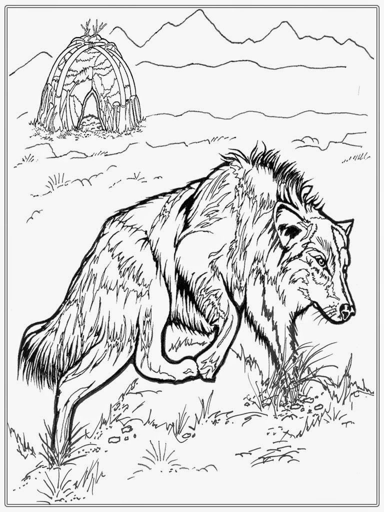 Realistic Wolf Adult Coloring Pages Realistic Coloring Pages