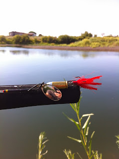 Reel Bullet Fishing Lures