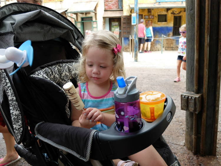 Walt Disney World, Animal Kingdom, Zuri's Sweets Shop, Zebra Marshmallows