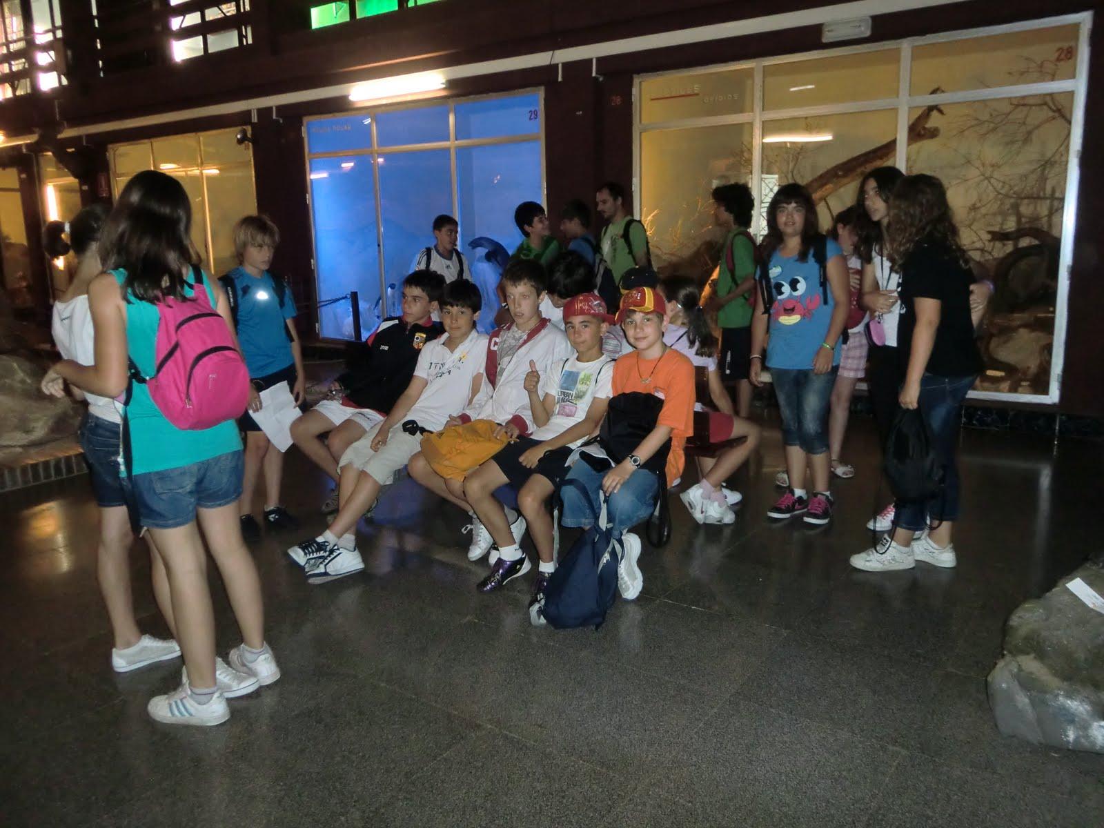 Tercer ciclo escuelas p as junio 2011 for Piscina escuelas pias