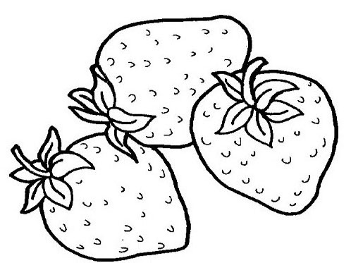 Tropical Fruits Coloring Pages Ideas