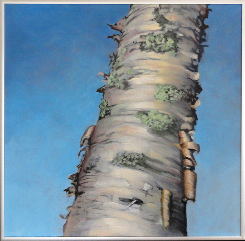 Ruth Lull: Chequamegon Nicolet National Forest Exhibition