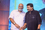 Dikkulu Chudaku Ramayya Audio launch-thumbnail-19