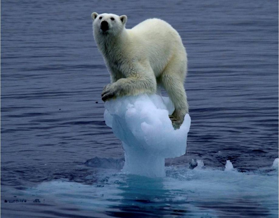 Consecuencias Del Calentamiento Global Tica a Partir Del Calentamiento Global