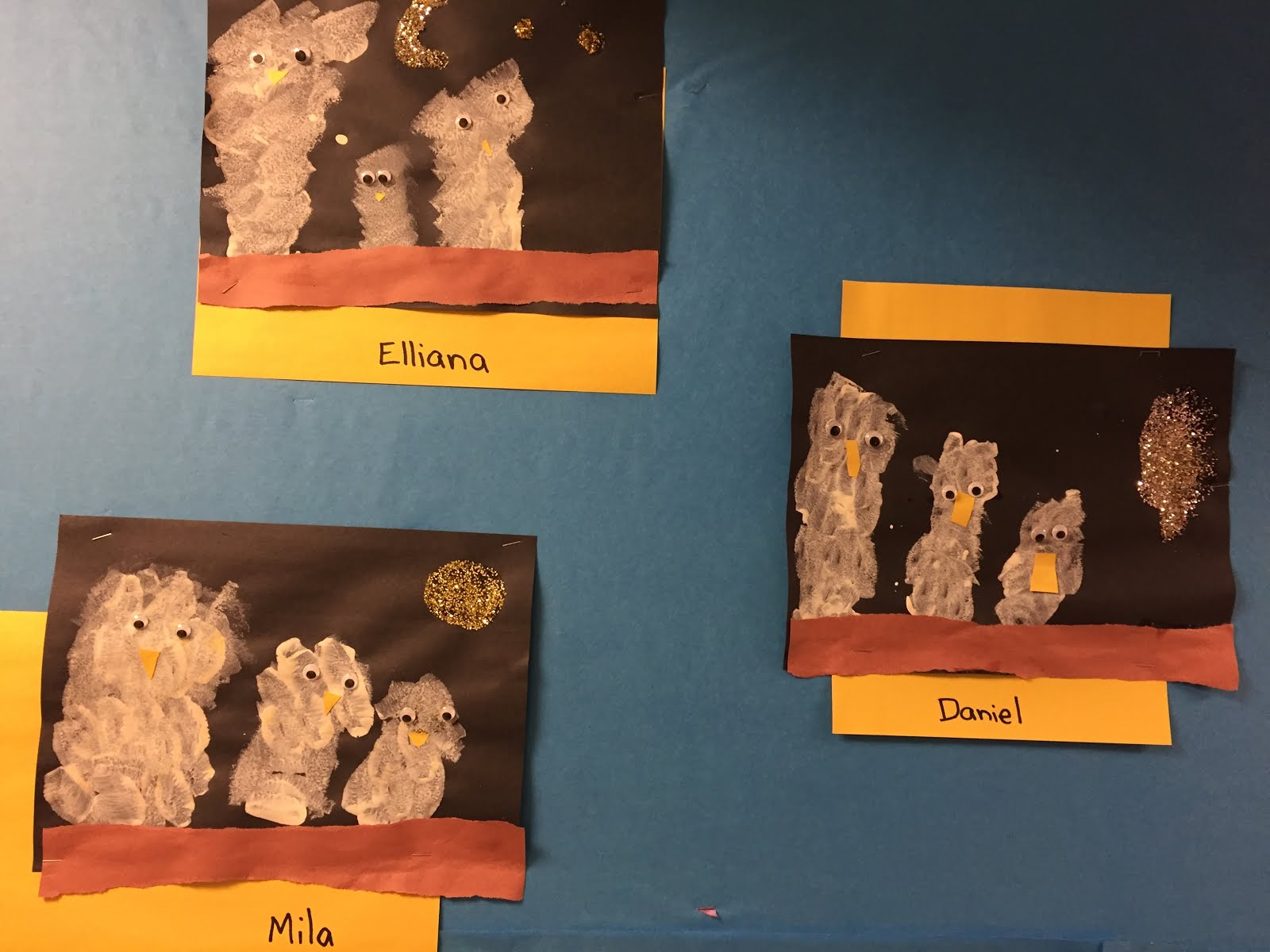 Our Owl Babies Pictures of Sarah, Percy and Bill!