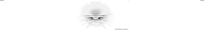 opiumrapid